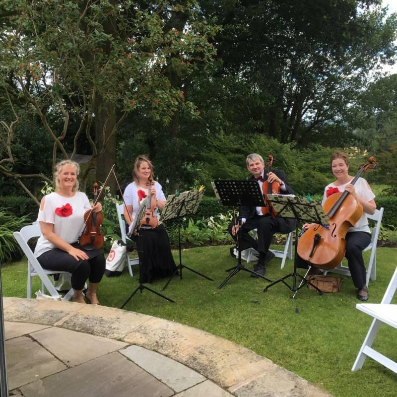 Quartet Cabaret String Quartet | Last Minute Musicians